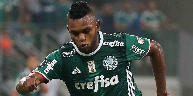 Miguel Borja preocupa a Palmeiras: sufrió esguince de rodilla