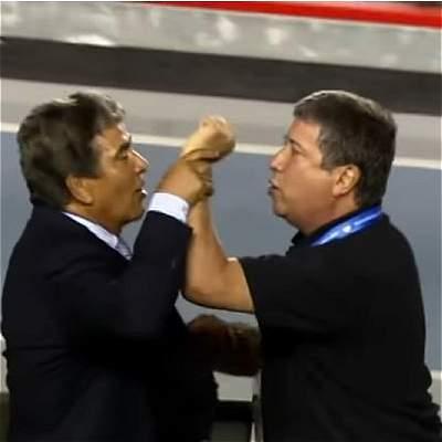 Pinto y Bolillo